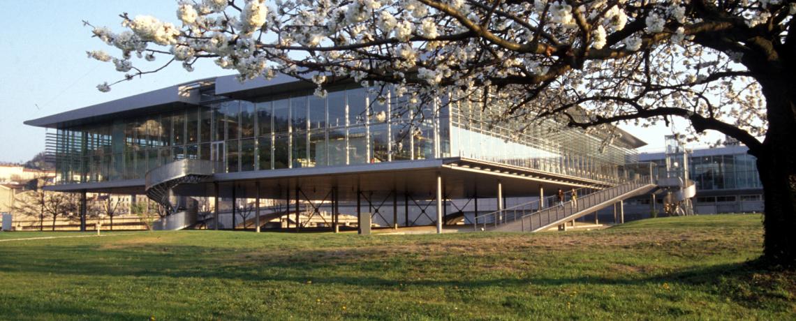 Musée Gallo-Romain de  Saint-Romain-en-Gal - Vienne